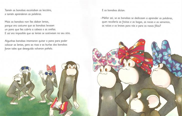 A historia dos bonobos con lentes na Casa da Lectura
