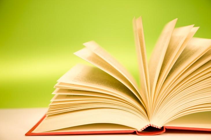 Espazo Lectura presenta o seu proxecto no Consello da Cultura Galega